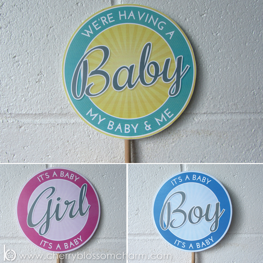 Collection of Signs for Photo Props in a  Pregnancy and Gender Reveal - Photo Ideas